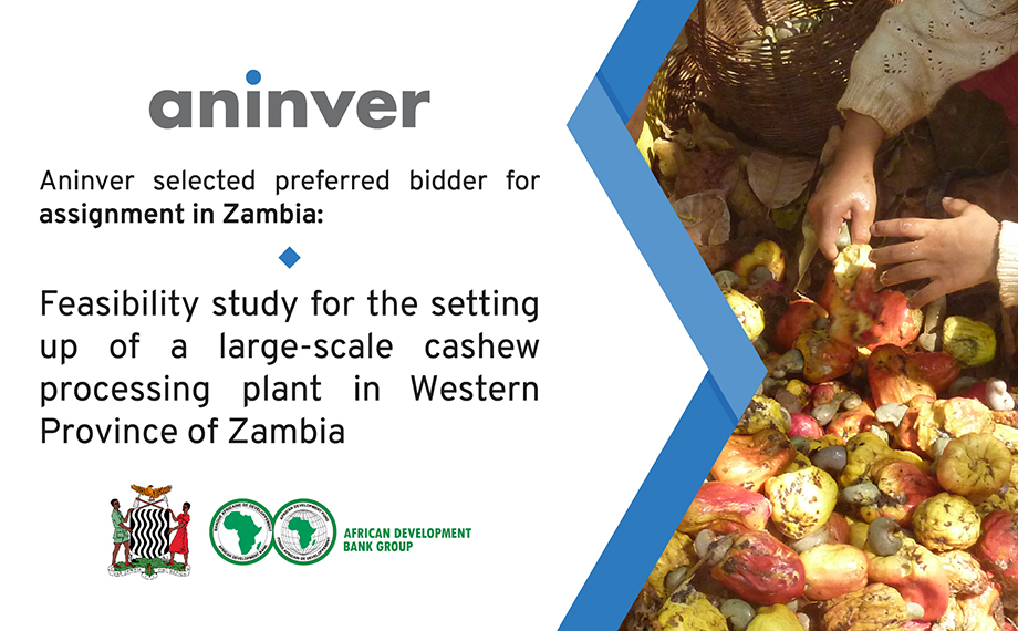 Aninver selected preferred bidder for assignment in Zambia